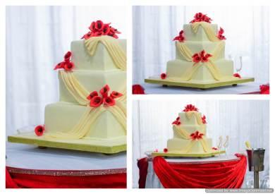 best wedding photos mauritius (135)