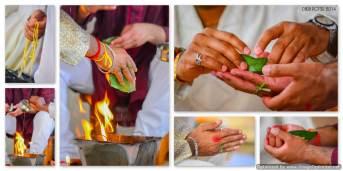 Mauritius Wedding Photo- Photographer Diksh Potter (39)