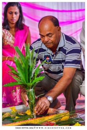 Mauritius-Indian-Wedding-Services-Photography-Videography-Diksh-Potter-Nishta & Sunil (15)