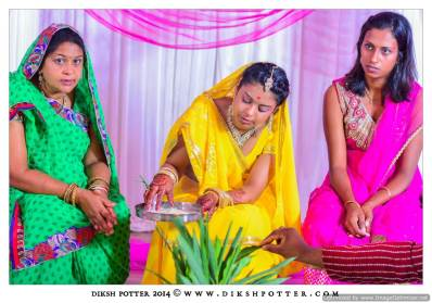 Mauritius-Indian-Wedding-Services-Photography-Videography-Diksh-Potter-Nishta & Sunil (18)