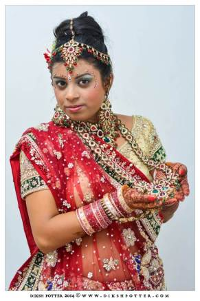 Mauritius-Indian-Wedding-Services-Photography-Videography-Diksh-Potter-Nishta & Sunil (37)