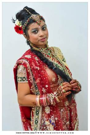 Mauritius-Indian-Wedding-Services-Photography-Videography-Diksh-Potter-Nishta & Sunil (38)