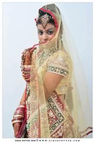 Mauritius-Indian-Wedding-Services-Photography-Videography-Diksh-Potter-Nishta & Sunil (41)