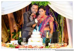 Mauritius-Indian-Wedding-Services-Photography-Videography-Diksh-Potter-Rishi & Jevina (17)