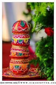Mauritius-Indian-Wedding-Services-Photography-Videography-Diksh-Potter-Rishi & Jevina (42)
