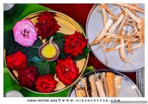 Mauritius-Indian-Wedding-Services-Photography-Videography-Diksh-Potter-Rishi & Jevina (45)