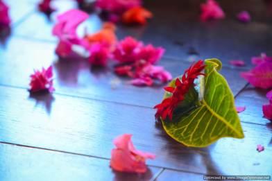 Dave & Jo's Wedding Photography by Diksh Potter Wedding Photographer Mauritius (63)