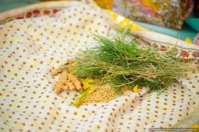Tisha & Satyam- Day 1- (137)