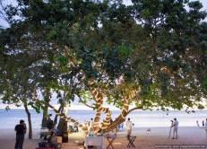 Mauritius Best Wedding Photo- British, England, Beach, Hotel (274)