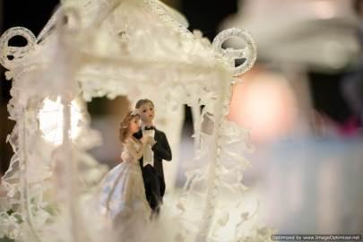 Mauritius Best Wedding Photo- Christian, churn, beach wedding (322)