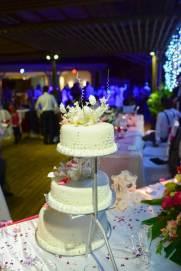 Mauritius Best Wedding Photo- Christian, churn, beach wedding (455)