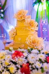 best-wedding-photographer-mauritius-tamil-wedding-engagement-civil-wedding-coromandel-diksh-potter-photographer-11