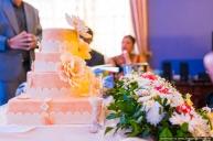 best-wedding-photographer-mauritius-tamil-wedding-engagement-civil-wedding-coromandel-diksh-potter-photographer-54