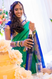 best-wedding-photographer-mauritius-tamil-wedding-engagement-civil-wedding-coromandel-diksh-potter-photographer-67