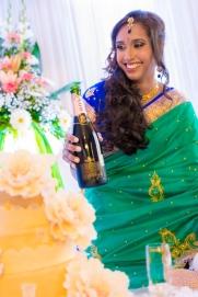 best-wedding-photographer-mauritius-tamil-wedding-engagement-civil-wedding-coromandel-diksh-potter-photographer-69